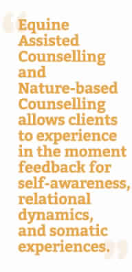 Equine assisted counselling